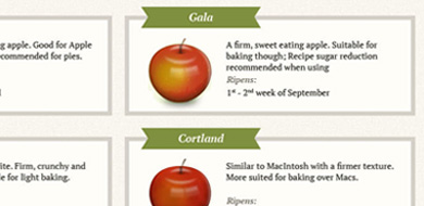Longmeadow website desitl of apples
